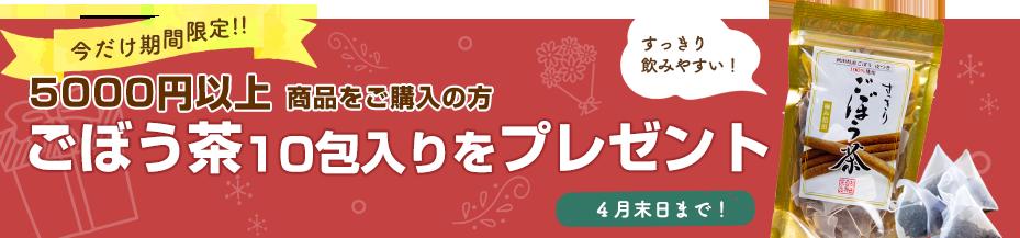 5000円以上 商品を購入の方 ごぼう茶 10包 入りをプレゼント!4月末まで